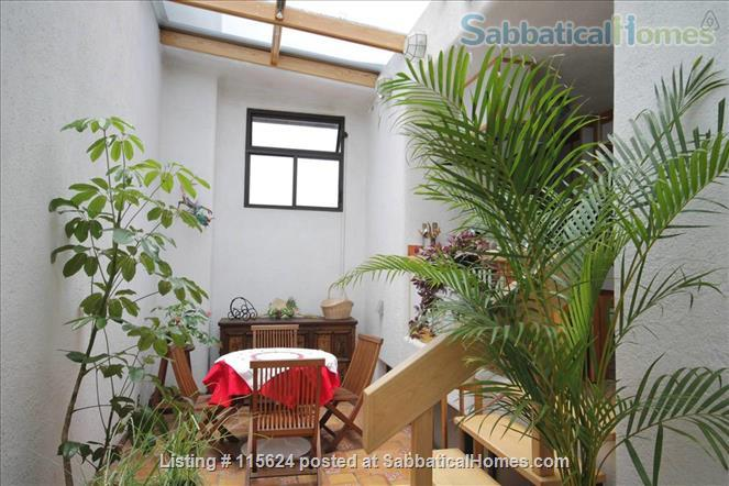 UNIQUE, LIGHTFILLED 2 BDRM/2 BATH IN ROMA NEIGHBORHOOD (FULLY FURNISHED, UTILITIES INCLUDED) Home Rental in Mexico City, CDMX, Mexico 1