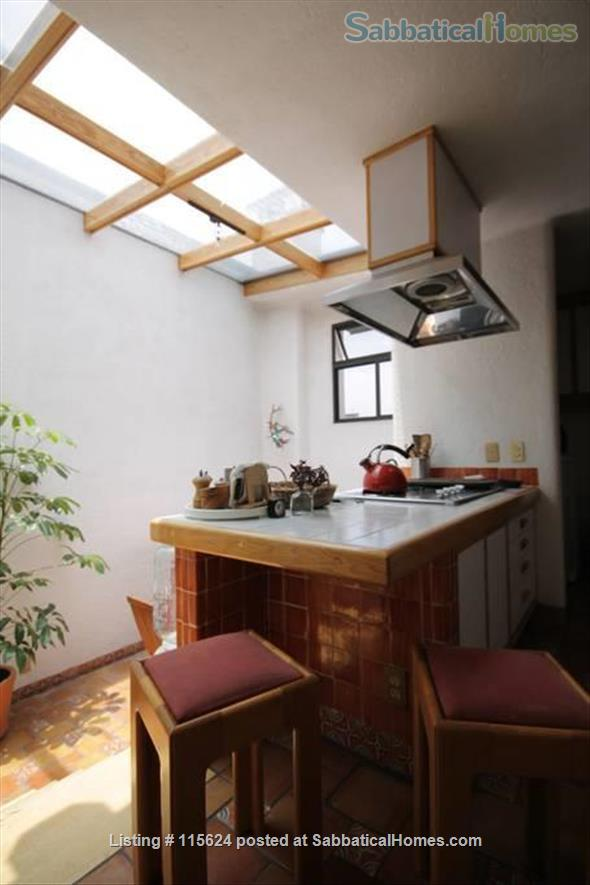 UNIQUE, LIGHTFILLED 2 BDRM/2 BATH IN ROMA NEIGHBORHOOD (FULLY FURNISHED, UTILITIES INCLUDED) Home Rental in Mexico City, CDMX, Mexico 0