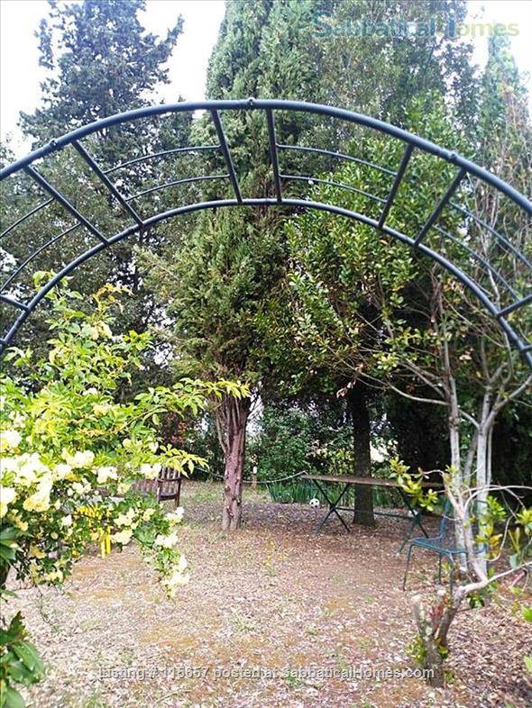First floor Apartment in the olive groves near Florence and Chianti! Home Rental in Bagno a Ripoli 9