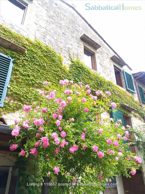 First floor Apartment in the olive groves near Florence and Chianti! Home Rental in Bagno a Ripoli 1