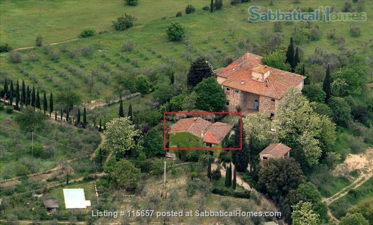 First floor Apartment in the olive groves near Florence and Chianti! Home Rental in Bagno a Ripoli 0
