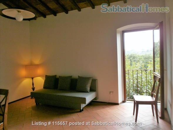 First floor Apartment in the olive groves near Florence and Chianti! Home Rental in Bagno a Ripoli 4