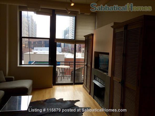 Stylish 1-bedroom Loft Beautifully Furnished for Rent in Printers Row Home Rental in Chicago, Illinois, United States 2