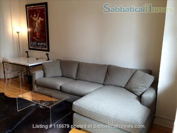 Stylish 1-bedroom Loft Beautifully Furnished for Rent in Printers Row Home Rental in Chicago, Illinois, United States 3
