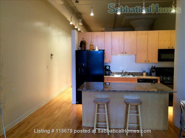 Stylish 1-bedroom Loft Beautifully Furnished for Rent in Printers Row Home Rental in Chicago, Illinois, United States 4