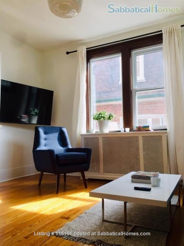 Bright, Spacious and Classic  Main Floor One Bedroom Apartment Home Rental in Toronto, Ontario, Canada 0