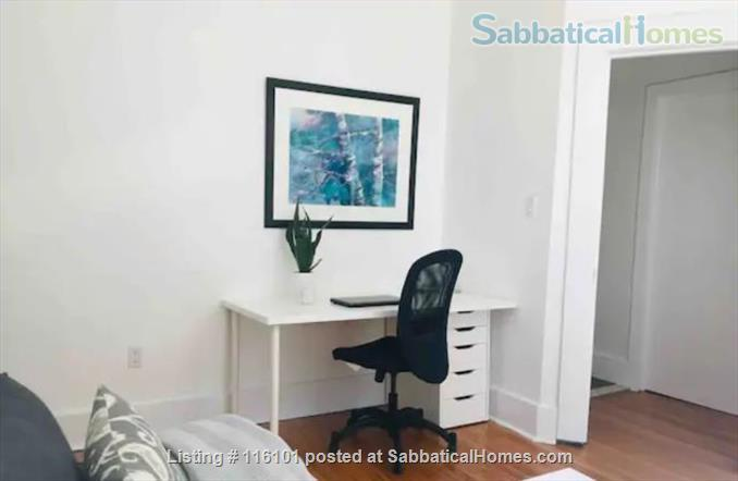 Bright, Spacious and Classic  Main Floor One Bedroom Apartment Home Rental in Toronto, Ontario, Canada 2