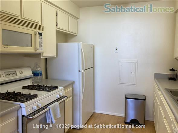 BRIGHT AND SPACIOUS LOFT - West LA (close to UCLA) Home Rental in Los Angeles, California, United States 5
