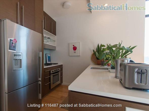 Luxury 1 Bedroom Loft Apt with Private Balcony in the Heart of Brooklyn, NY Home Rental in Brooklyn, New York, United States 3