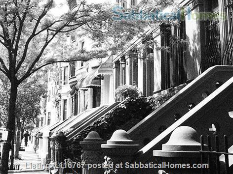 Harlem Hideaway Garden Apartment Home Rental in New York 1