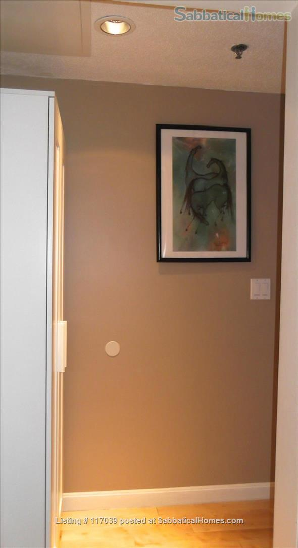 $2790-Min 6 mts Furnished Modern Studio, walk to Davis Subway near Harvard, Tufts with UTILITY Home Rental in Cambridge, Massachusetts, United States 5