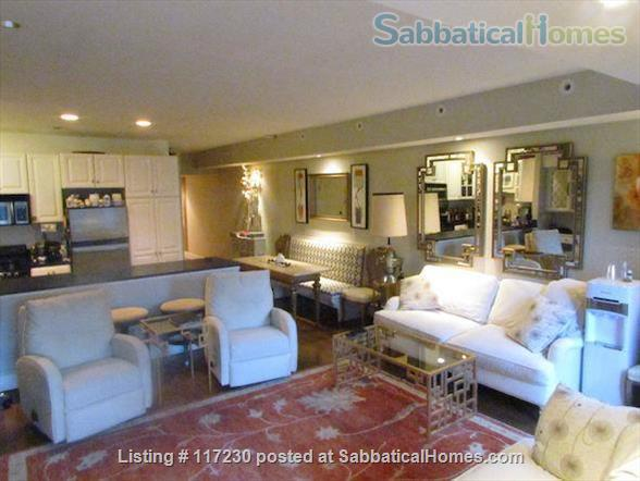 Stunning 1 BR Beacon Hill Luxury Condo with Private Garden/Patio &  Private Entrance Home Rental in Boston, Massachusetts, United States 2