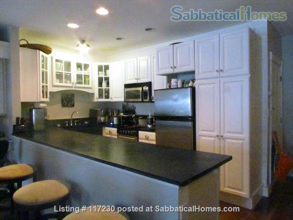 Stunning 1 BR Beacon Hill Luxury Condo with Private Garden/Patio &  Private Entrance Home Rental in Boston, Massachusetts, United States 4