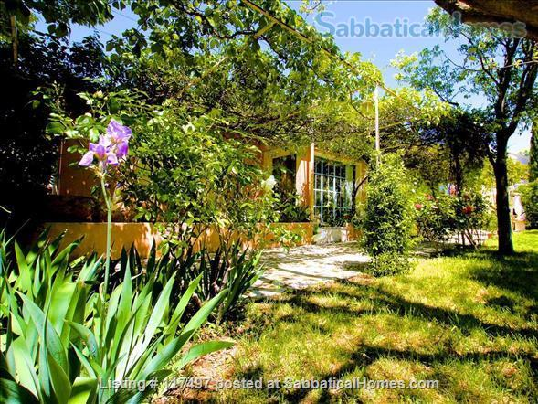 The Olive Garden - Provence charm with optic fibre Wifi Home Rental in Caromb, Provence-Alpes-Côte d'Azur, France 2