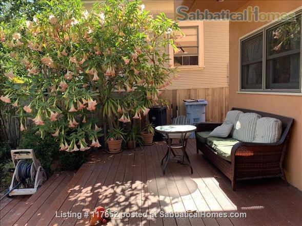 2 bd/2 bath sunny, updated duplex w/lush yard & large deck, walk everywhere Home Rental in Berkeley, California, United States 1