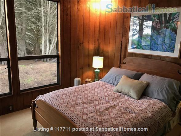 Beautiful, private, unique architectural home on the southern Mendocino Coast Home Rental in Gualala, California, United States 8