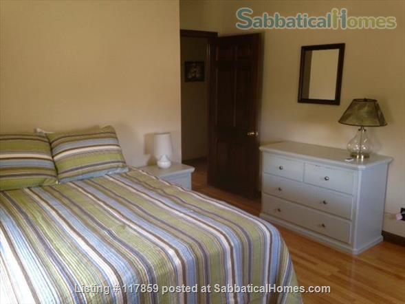 HOUSE SHARE IN DOWNTOWN NORTHAMPTON Home Rental in Northampton, Massachusetts, United States 7