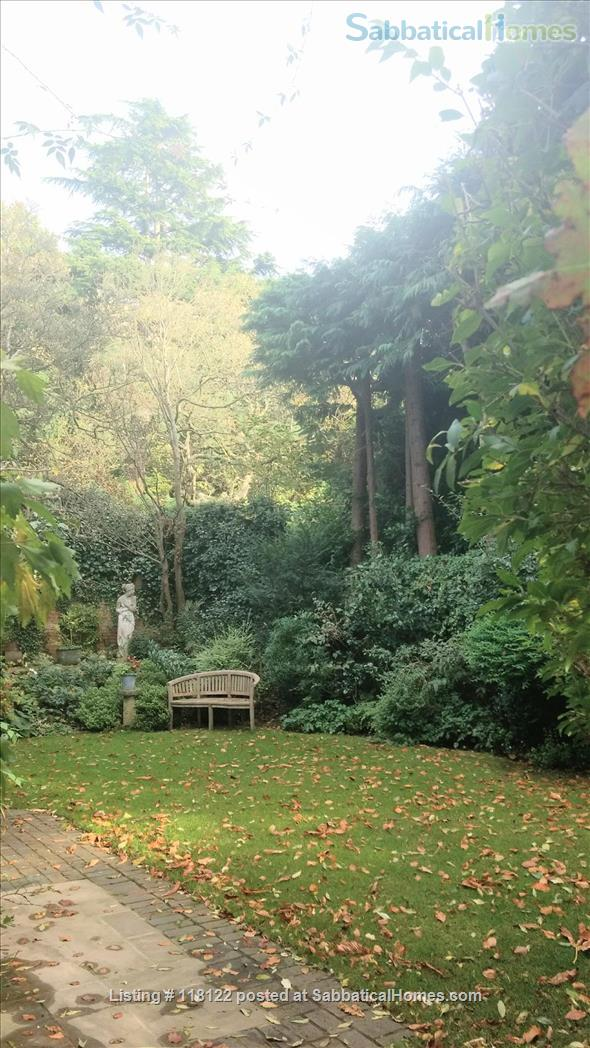Small modern studio in the heart of Hampstead  Home Rental in London, England, United Kingdom 4