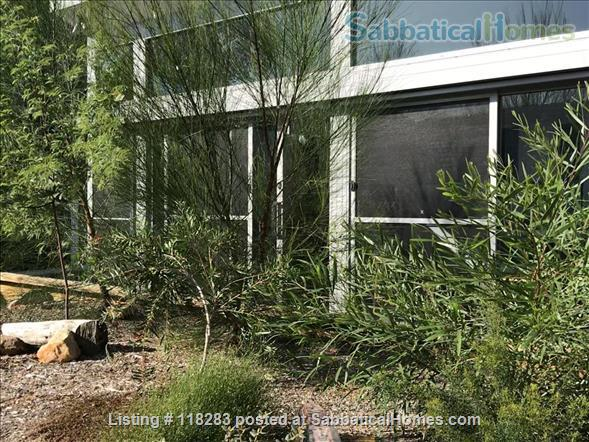 Sun filled modern guest house in quiet area, close to city Home Rental in Earlwood, NSW, Australia 7