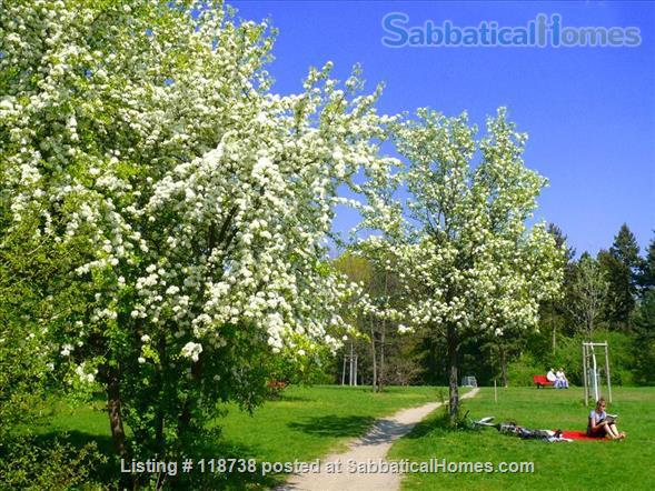 ** BRIGHT APARTMENT IN SUPER LOCATION ** Home Rental in Berlin, Berlin, Germany 9