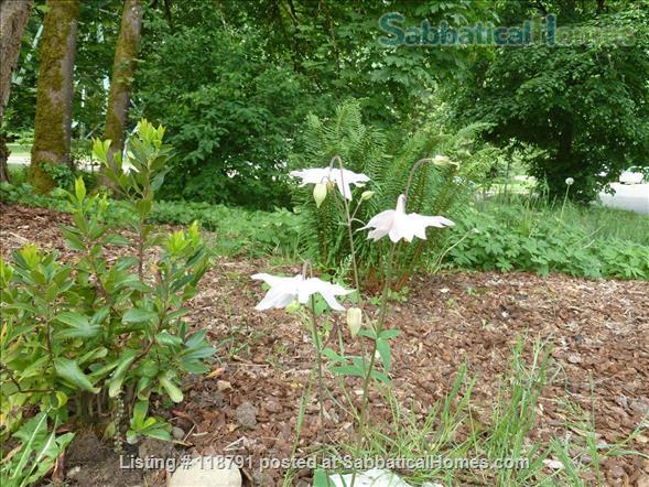 Mother-in-Law in Forest Park -- Short or Long term Home Rental in Portland, Oregon, United States 9