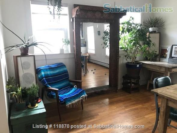 2000 sq foot, large , sunny 2 bedroom with yard  near red line and restaurants  Home Rental in Cambridge, Massachusetts, United States 3