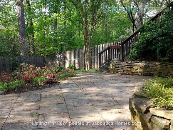 Silver Spring, MD, Basement Apt Near Metro, Parks Home Rental in Silver Spring, Maryland, United States 1