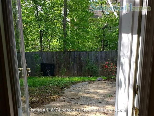 Silver Spring, MD, Basement Apt Near Metro, Parks Home Rental in Silver Spring, Maryland, United States 0