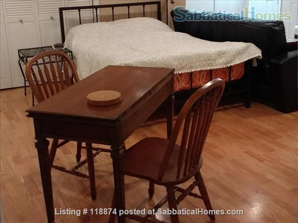 Silver Spring, MD, Basement Apt Near Metro, Parks Home Rental in Silver Spring, Maryland, United States 5