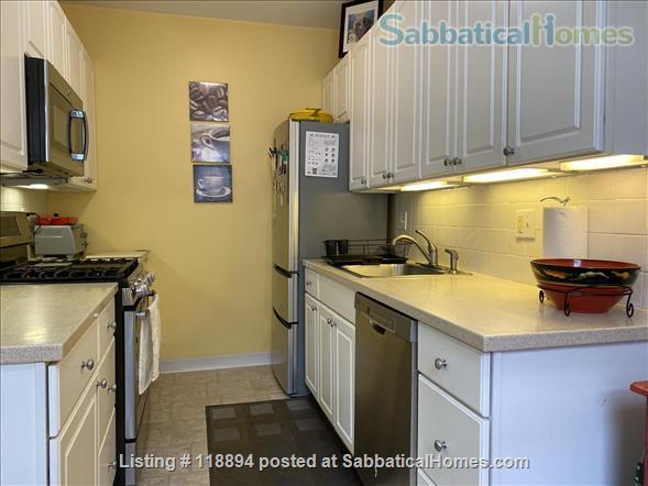 Exceptional 1 br Cambridge MA USA Home Rental in Cambridge, Massachusetts, United States 5
