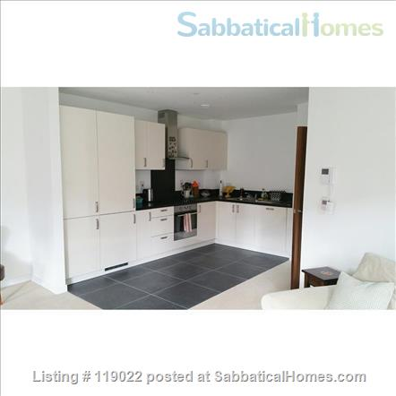 Central London (E1) Two bed modern apartment Home Rental in Greater London, England, United Kingdom 7