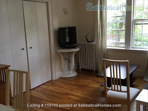Bright & Quiet 1 Bdrm Apt in the heart of  Harvard Square Home Rental in Cambridge, Massachusetts, United States 4