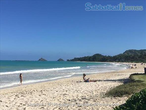 Special, quiet, ocean view lovely home  close to beach heated pool/spa surrounded by nature Home Rental in Kailua, Hawaii, United States 9