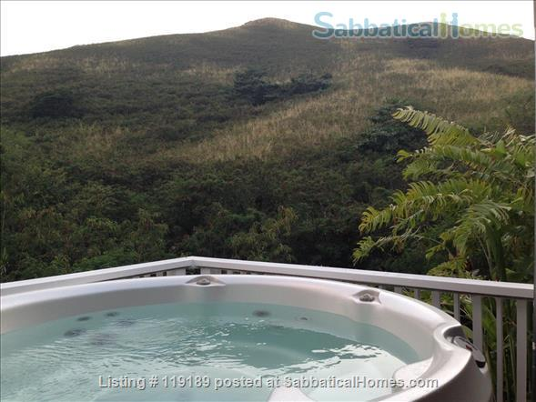 Special, quiet, ocean view lovely home  close to beach heated pool/spa surrounded by nature Home Rental in Kailua, Hawaii, United States 2