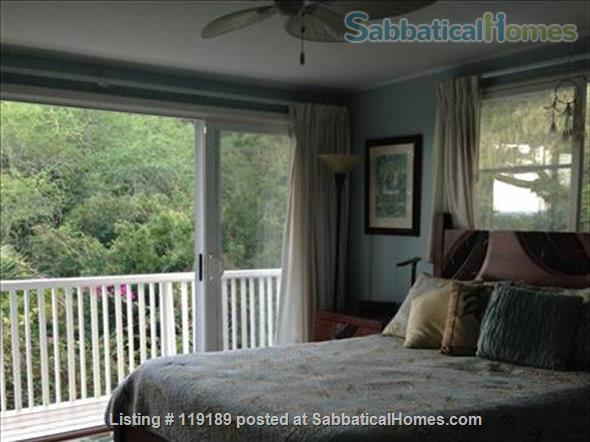 Special, quiet, ocean view lovely home  close to beach heated pool/spa surrounded by nature Home Rental in Kailua, Hawaii, United States 6
