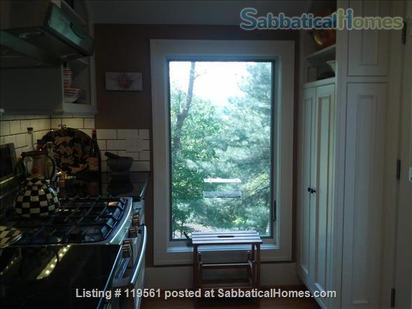 Fabulous FURNISHED Craftsman Style Home, 3.5 BR/ 2 BA, Available Summer 2022 and 2022-2023 academic year Home Rental in Ithaca, New York, United States 2