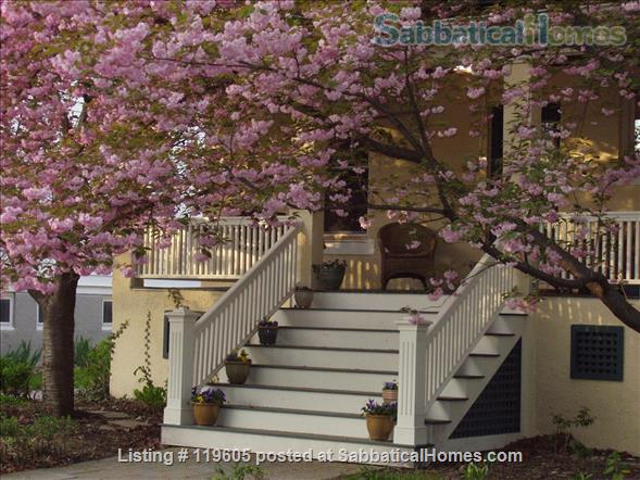 Perfect Family Spot in Brookline MA,  August 2021 Home Rental in Brookline, Massachusetts, United States 1