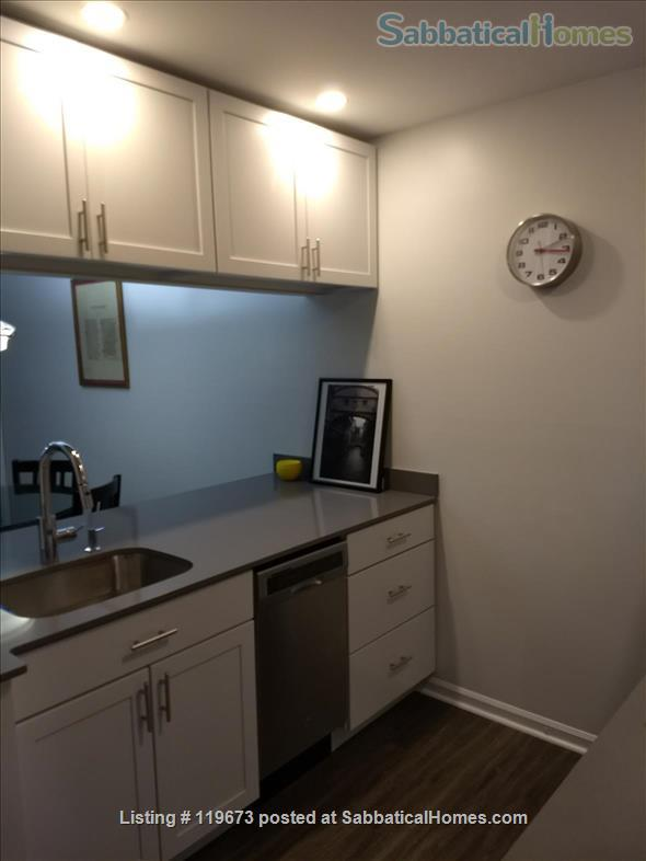 Condo for rent - Downtown Durham NC Home Rental in Durham, North Carolina, United States 3