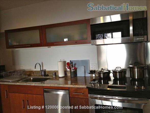 Beautiful, Furnished Studio Plus View Apartment Home Rental in Berkeley, California, United States 5