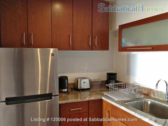 Beautiful, Furnished Studio Plus View Apartment Home Rental in Berkeley, California, United States 6