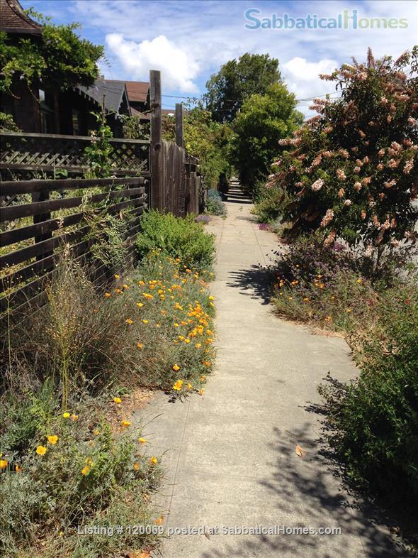 Modern, Green Architecture Gem Home Rental in Berkeley, California, United States 9