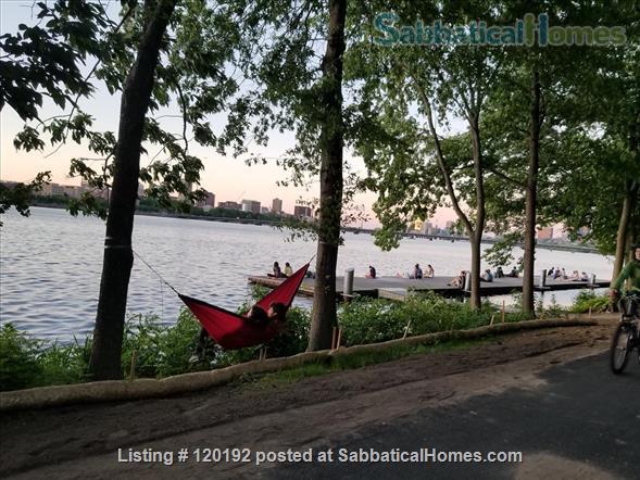 RIVERVIEWS!  Safe, Central City BOSTON  Condo--Walk Everywhere!  Flexible Dates. Home Rental in Boston, Massachusetts, United States 1
