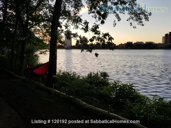 RIVERVIEWS!  Safe, Central City BOSTON  Condo--Walk Everywhere!  Flexible Dates. Home Rental in Boston, Massachusetts, United States 8