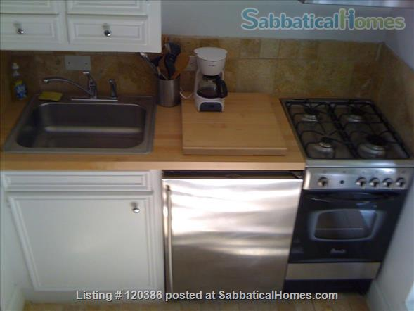 Historic & Vibrant Dolores Park spacious 1 bedroom Home Rental in San Francisco, California, United States 4