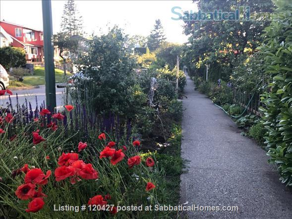 Lovely Character Home in Point Grey Home Rental in Vancouver, British Columbia, Canada 5