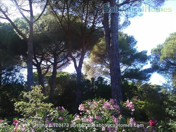 Villa on the French Riviera with seaview Home Rental in Sainte-Maxime, Provence-Alpes-Côte d'Azur, France 2