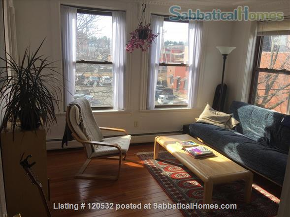 Large 1.5-Bedroom: July 1 – August 30, 2021 Home Rental in Northampton, Massachusetts, United States 0