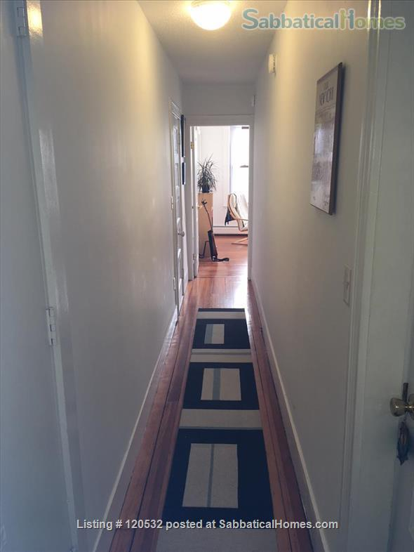 Large 1.5-Bedroom: July 1 – August 30, 2021 Home Rental in Northampton, Massachusetts, United States 5