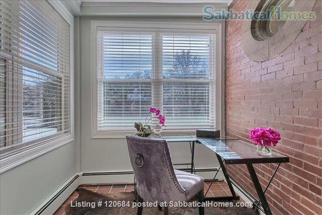 Stunning, renovated 1-bedroom apartment in the heart of Brookline Home Rental in Brookline, Massachusetts, United States 2