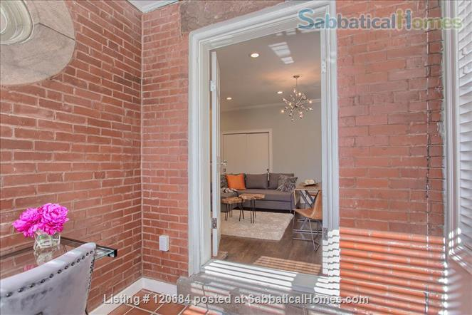 Stunning, renovated 1-bedroom apartment in the heart of Brookline Home Rental in Brookline, Massachusetts, United States 3